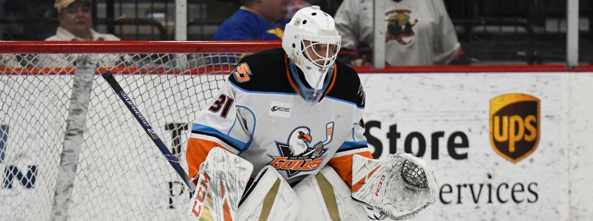 Gulls Reassign Eriksson Ek to Tulsa