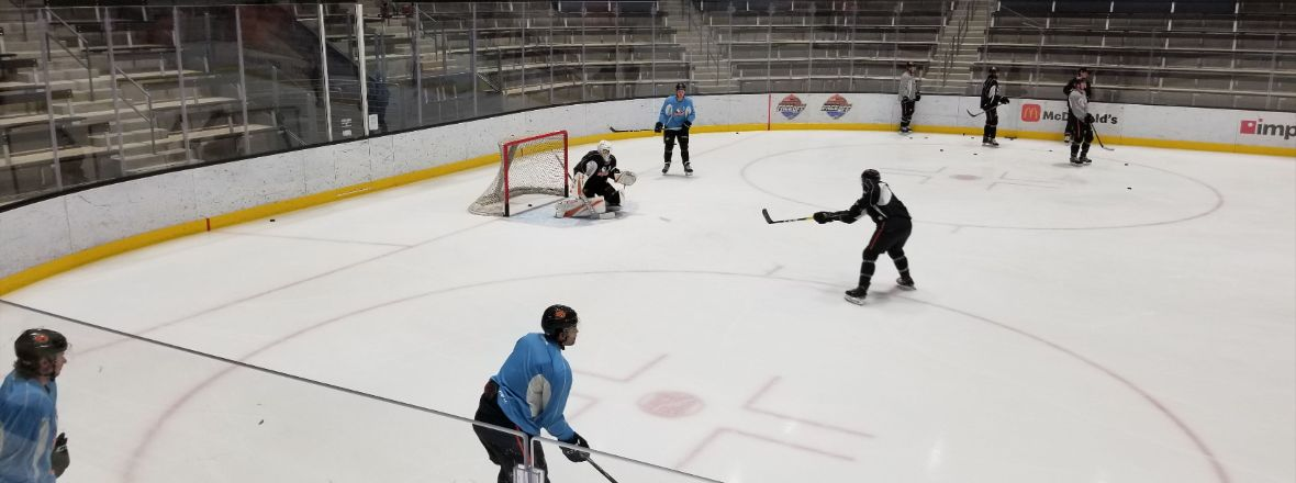 Gulls Camp: Goaltending Strength