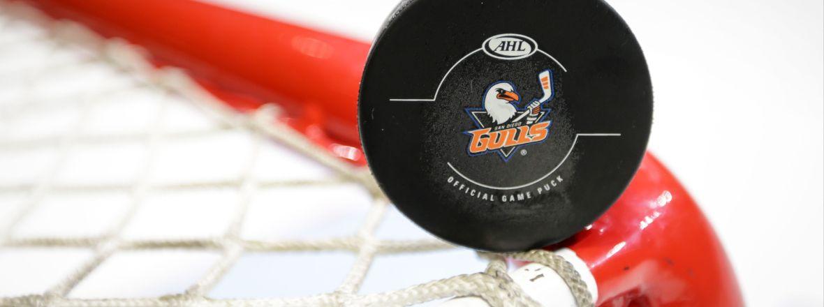 Gulls Announce New Gulls Elite Membership Program