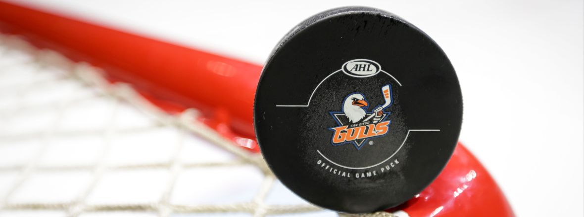 Gulls Announce Roster Moves