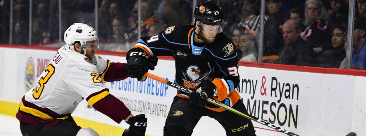 Ducks Assign Larsson to San Diego