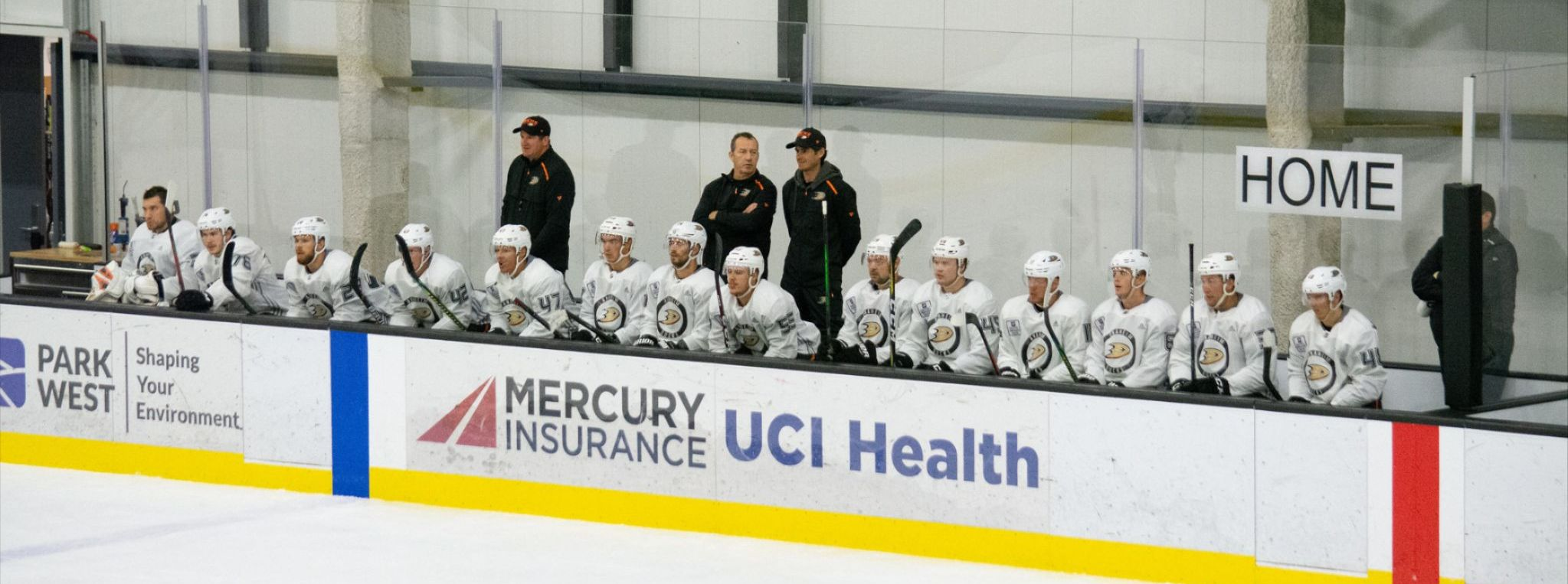 Gulls Camp: Introduction of Day One