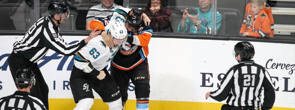 Gulls Fall to Barracuda 5-1