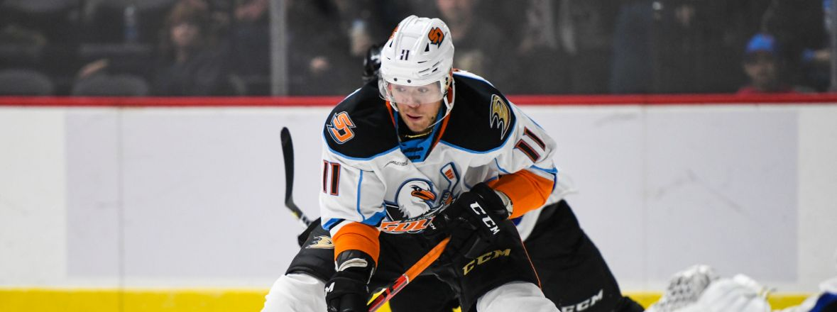 Ducks Recall Sprong from San Diego