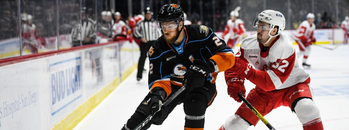 Gulls Earn Point in Shootout Loss