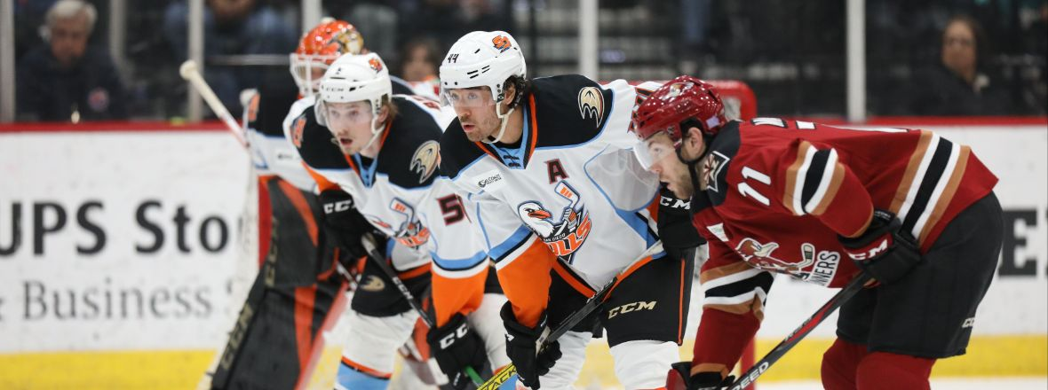 Gulls Enter New Year On A Loss