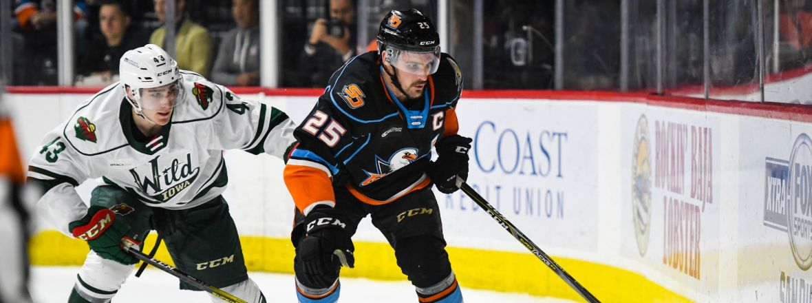 LIVE: Gulls, Wild Tied 2-2 After Second Period