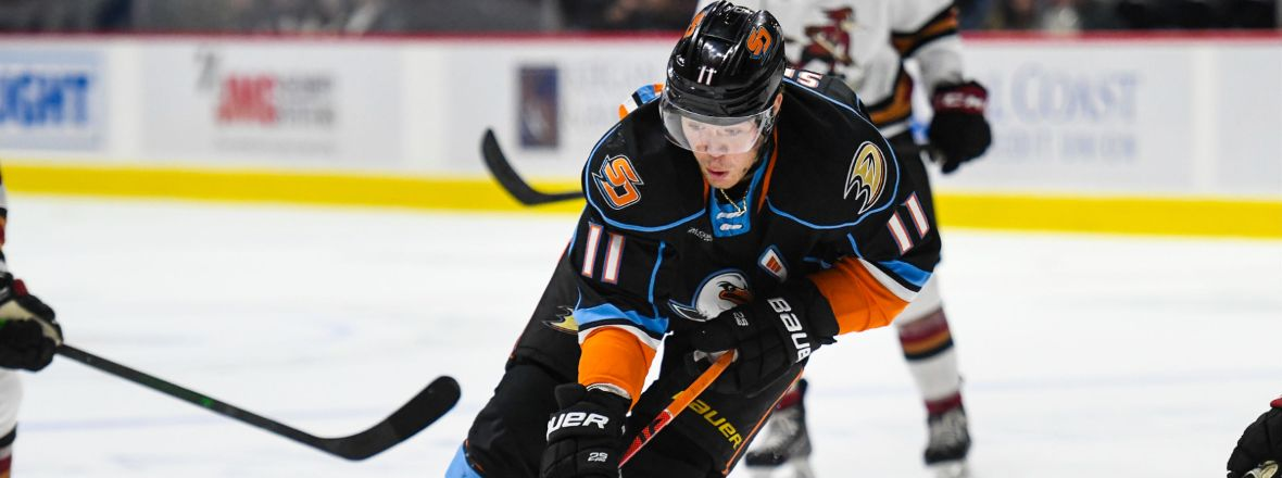 Ducks Reassign Sprong, Recall Sherwood
