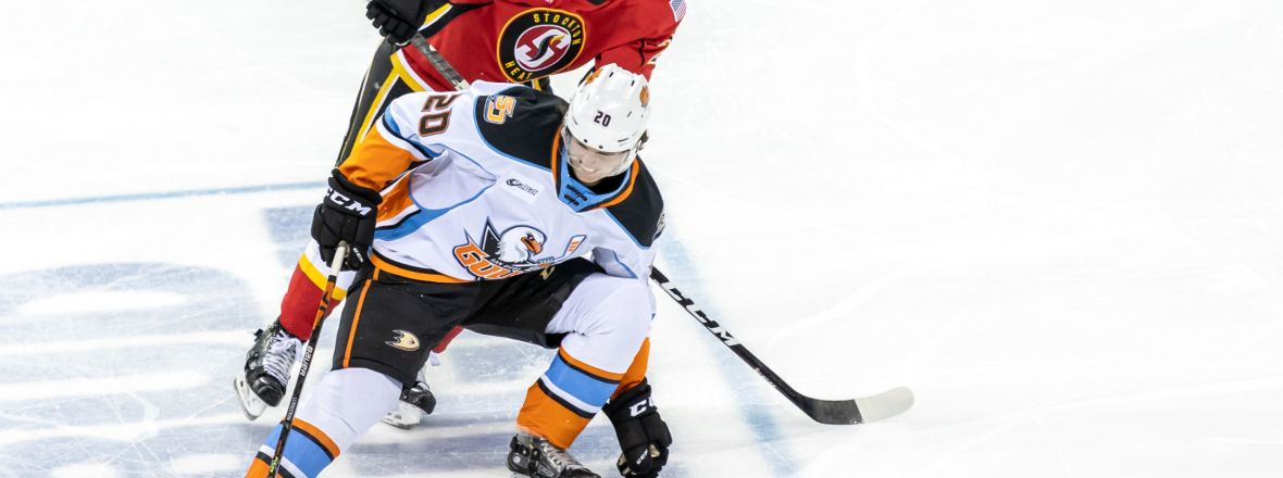 Gulls Grab Point in Overtime Loss