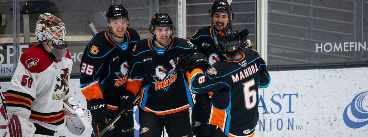 Rookie Trio Powers Gulls