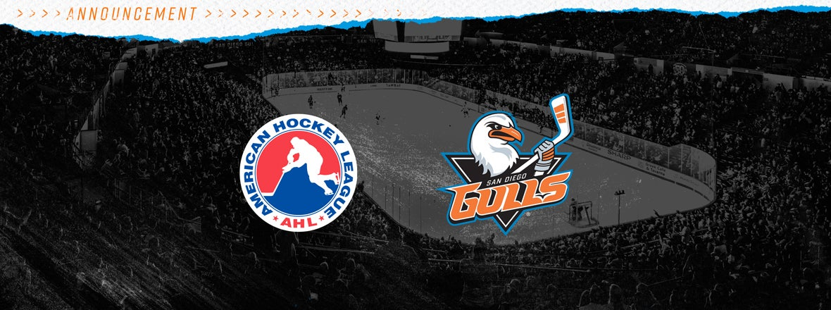 AHL Sets Feb. 5 As Target Start Date for 20-21 Season