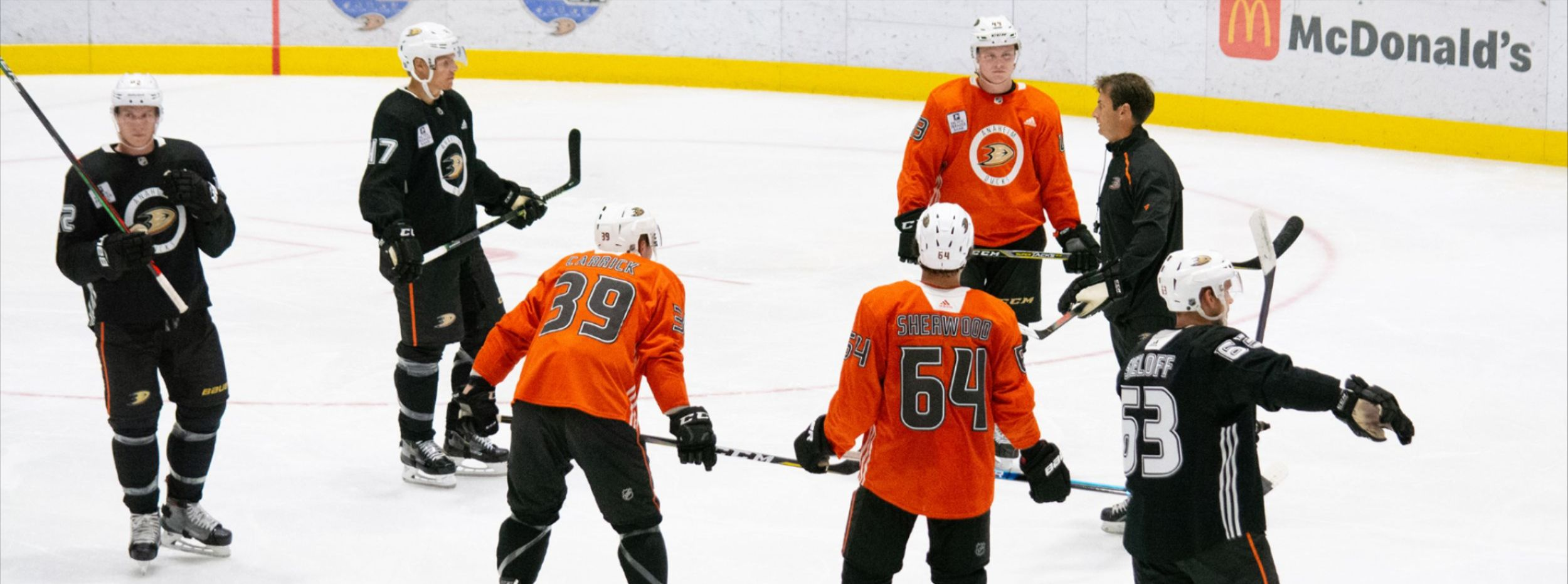 Ducks Camp: Learning from the Past