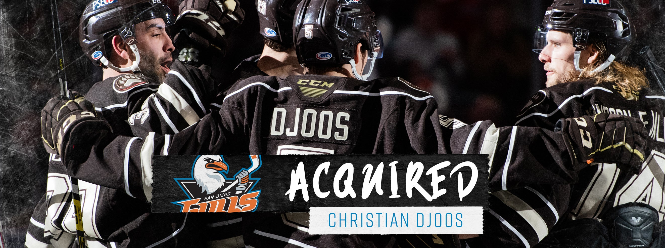 Ducks Acquire Djoos from Washington