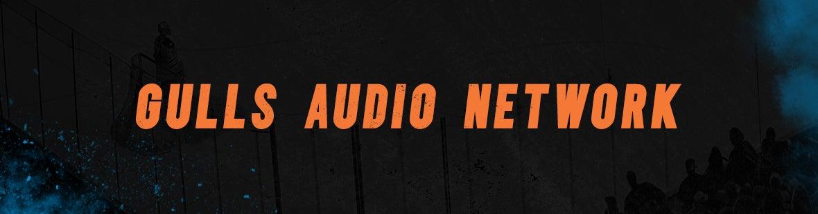 Gulls Audio Network Banner.jpg