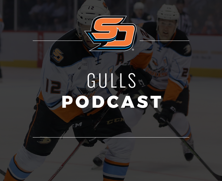 Gulls-Podcast.png