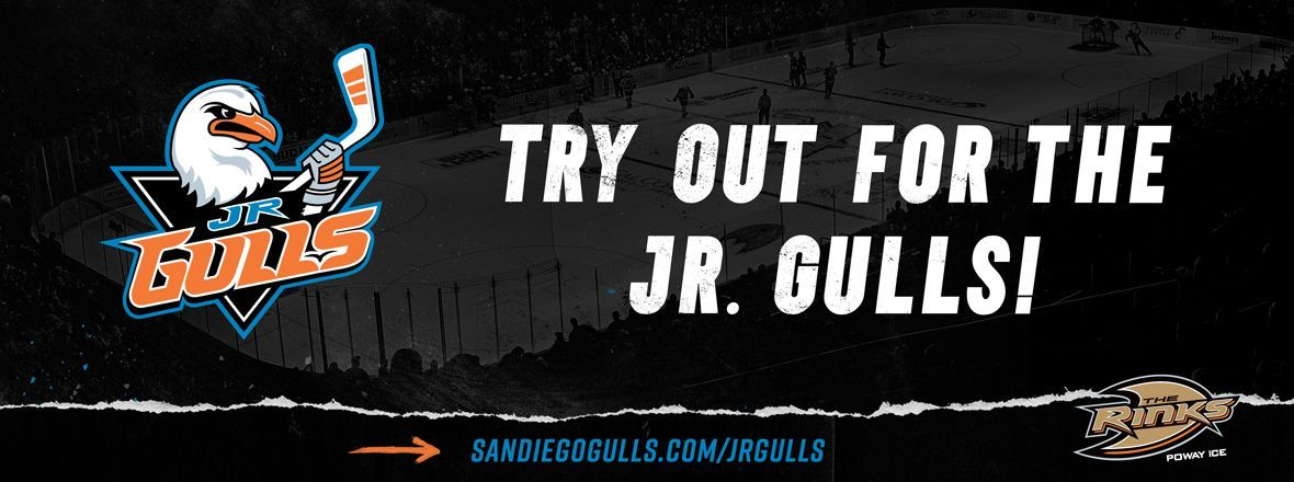 Jr. Gulls Release New Logos, Announce Tryouts