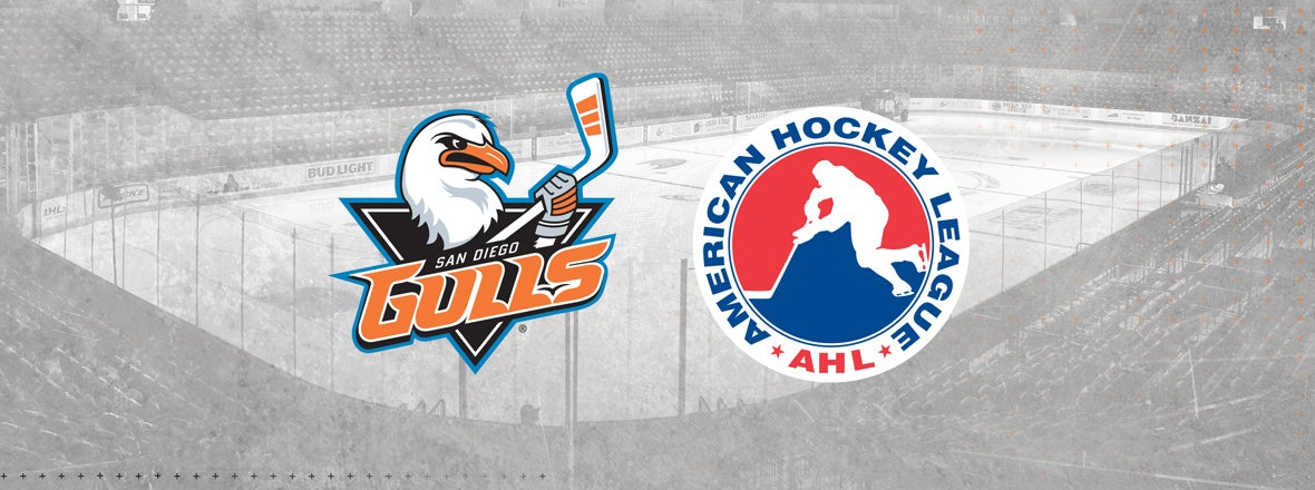 AHL Cancels Remainder of 2019-20 Season, Playoffs