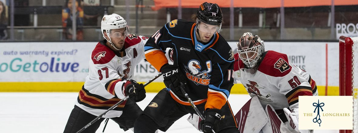 LIVE: Gulls Downed By Roadrunners 9-2