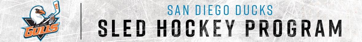 Sled Hockey - Web Banner.jpg