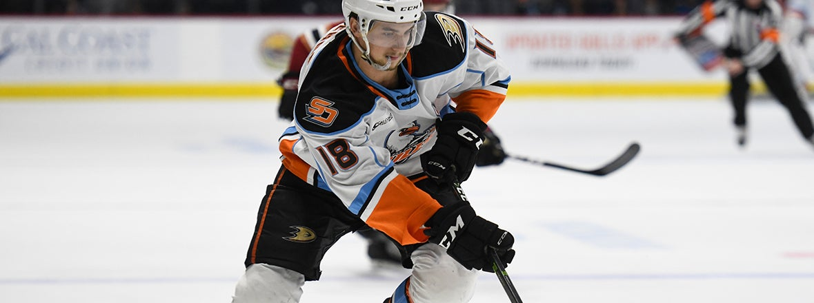 PREVIEW: Gulls at Wild