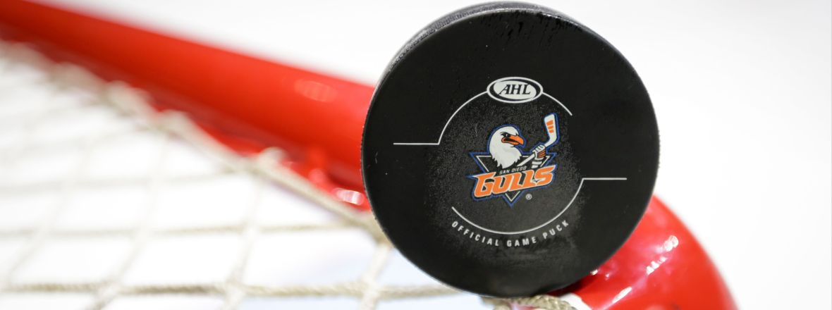 Gulls to Appear on NHL Network March 29