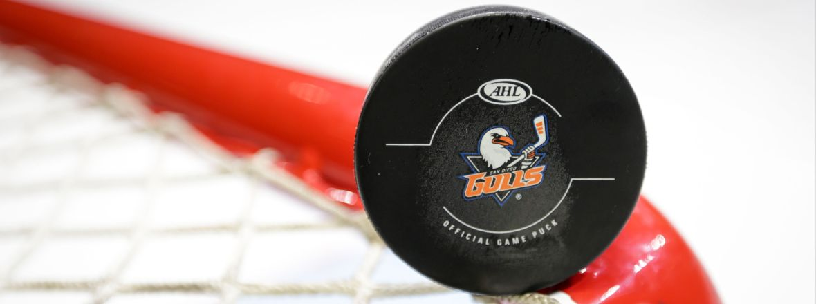 Gulls Sign Pollock, Thomas to Professional Tryouts