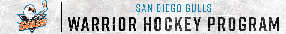 Warrior Hockey - Web Banner.jpg