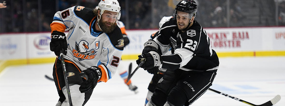 Preview: Gulls at Reign