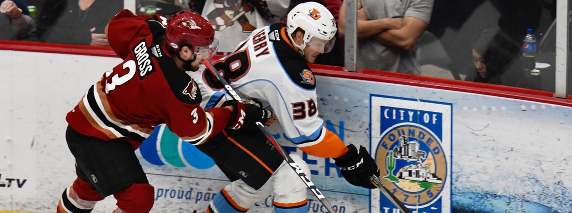 Final: Gulls 3, Roadrunners 4 OT