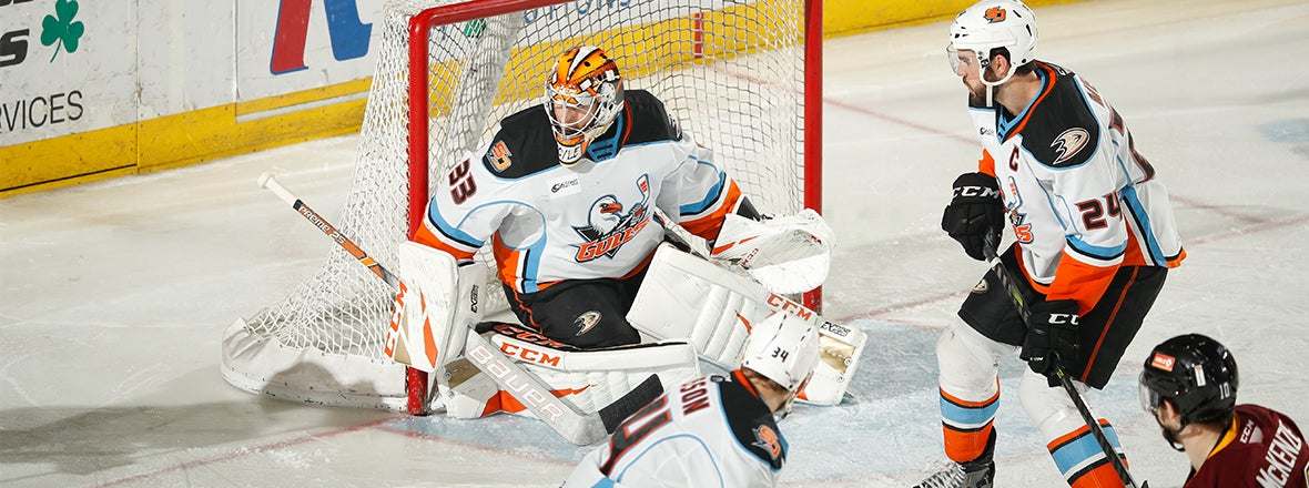 Boyle Shuts Out Wolves, Gulls Tie Series